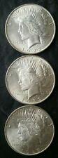 Lot of Three 1923 $1 Peace Silver Dollars