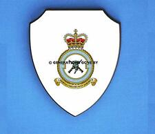 ROYAL AIR FORCE 2503 COUNTY OF LINCOLN SQUADRON WALL SHIELD (FULL COLOUR)