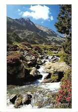 BT8139 Vallee d aure Estragne        France