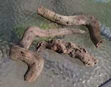 Twisty Driftwood- Terrarium, Reptile, Snake Moulting Scrape, Habitat Display
