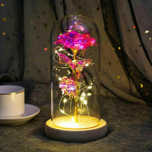 Beauty And Beast Rose Flower LED Light in Glass Dome Valentines Day Xmas Gift UK