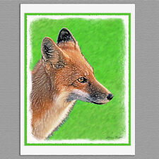 6 Red Fox Animal Blank Art Note Greeting Cards