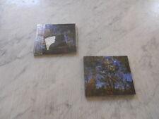 The Earth King - Cycling Between Sun And Moon DIGIPACK CD NEW+++NEU+++