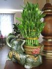 Lucky Bamboo Jumbo Size Elephant Ceramic Vase 2 Tier 4