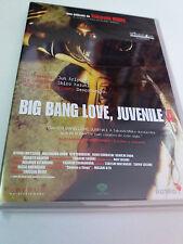 "DVD ""BIG BANG LOVE, JUVENILE A"" TAKASHI MIIKE EN MUY BUEN ESTADO"