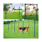 MelkTemn Dog Agility Set - 3 in 1 Dog Agility Equipment with Dog Agility Hurd...