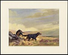 GORDON SETTER DOG FOOD CALENDAR ADVERT PRINT MOUNTED READY TO FRAME