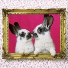 Baby Bunny Rabbit Luxury Glitter Blank Art Greeting Card Animal Lovers Cute