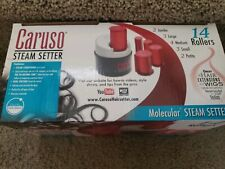Caruso ProTraveler Molecular Steam Hairsetter, 14 Rollers, 5 Sizes