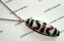 FENG SHUI - TIGER TOOTH DZI BEAD STAINLESS STEEL NECKLACE
