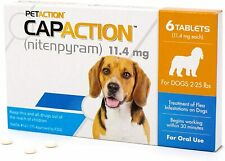 Oral Flea for Dogs Medication Medicine Pills Flea Treatment Small Dog 6ct