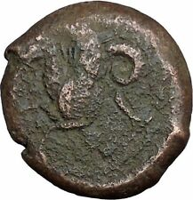 Syracuse in Sicily Ancient Greek Coin Hippocamp Sea horse Athena Cult  i37344