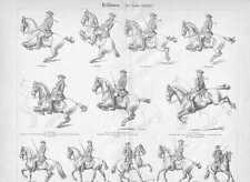 REITKUNST Hohe Schule DRESSUR Pferde HOLZSTICH von 1906 Dressurreiten Reitschule