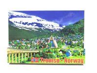 Tromso Nordlichter Polarkreis 3D Holz Souvenir Magnet Norway Norwegen