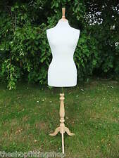 Female Dressmaking MANNEQUIN TAILORS Dummy Size 14/16 Dressmakers Bust Model NEW