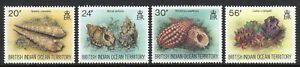 British Indian Ocean Terr. 1996 Sea Shells set fine fresh MNH