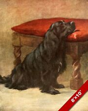 Patiently Waiting English Cocker Spaniel Pet Dog Art Painting Real Canvas Print