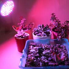 3X(6W LED Bombilla de crecimiento de planta Proyector para crecimiento de p C1D6
