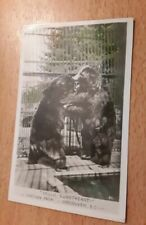 Vintage collectible POSTCARD used STANLEY PARK Canada SWEETHEART BEARS