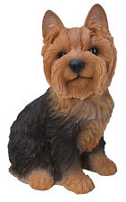 Vivid Arts - REAL LIFE DOGS - Yorkie Yorkshire Terrier Sitting Large