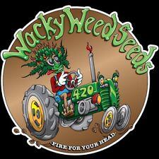 MARIJUANA SEED – Cannabis & Marijuana Domain Name WackyWeedSeed.com