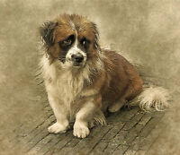 """stunning  36x24 oil painting handpainted on canvas""""a lovely dog""""N7383"""