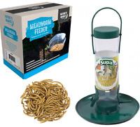MEALWORM FEEDER - Wild Bird Feed Holder bp Pet Food Tray kf PawMits Basket Bowl