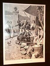 Bersaglieri e tattiche autunnali di Matania + Ministri nel 1903 Pedotti Stelluti