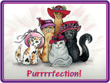 4X PURPLE T SHIRT CUSTOM KITTY CAT PINK & RED HAT DESIGN FOR LADIES OF SOCIETY