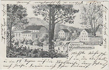 DG 17. Saalhausen - Freital 1911 ! Litho Dorfansicht mit Gasthof !