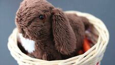 American Girl Nutmeg Julie's Pet Bunny Set With Basket Pillow Carrots New In Box