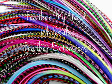100 Pc Whiting Farm Grizzly Feather Extension In Bright Colors REAL FEATHERS