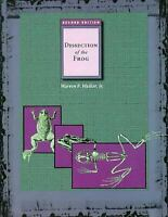 Anatomy and Dissection of the Frog Paperback Homber