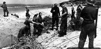 6x4 Gloss Photo ww2BA Normandy Calvados Deauville 1944