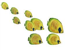 Wandtattoo Fische Unterwasserwelt Wandsticker Falterfisch Schwarm Korallenriff