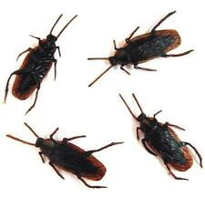 100 BULK COCKROACH BUGS fake creepy bug roach joke cockroaches insects REALISTIC