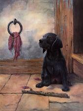LABRADOR RETRIEVER DOG GREETINGS NOTE CARD BEAUTIFUL BLACK LABRADOR PUPPY