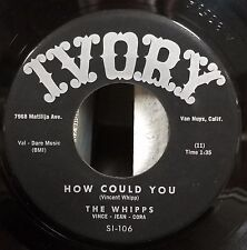 Whipps | RARE! Hillybilly 45 | How Could You / I'm Lost | Ivory SI-106