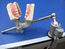 NEW Dental Mounting Pole +DP RING for dentoform Kilgore Nissin Columbia Frasaco