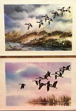 "2 Sherm Pehrson Duck Prints 1972 Wildlife 12""x18"""