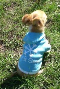 Hunde T Shirt Pullover Op Schutzhemd XXS Rl.15-19cm Chihuahua Welpen Wedelshop