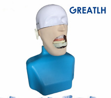 Dental manikin Phantom Head for dentist Sennior manikin Phantom Head with Torso