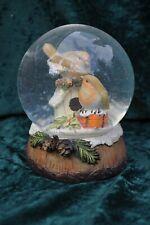 Christmas Robins Snow Globe