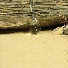 Real Dandelion Seed Make Wish teardrop Silver Necklace pendant women Jewellery