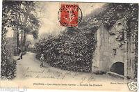 77 - cpa - PROVINS - Une allée du jardin Garnier - Fontaine Sainte Elisabeth