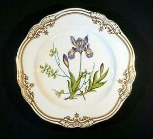 Stunning Spode Stafford Flowers England Dinner Plate