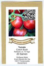 Tomate - Czech Bush - frühe Sorte - auch Balkon + Terrasse - 20 Samen