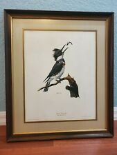"""Ray Harm """"Belted Kingfisher"""" Lithograph Plate XVII in Wood Matted Glass Frame"""