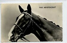 (Ga7862-474) Real Photo of The Aristocrat, Racehorse 1960 G-VG Valentines