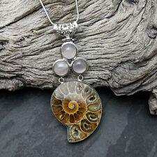 FOSSIL AMMONITE Estaño Encanto Colgante Collar-UK Made-Geología Paleontología
